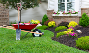 Get Front And Back Yard Landscaping Services In Califorina