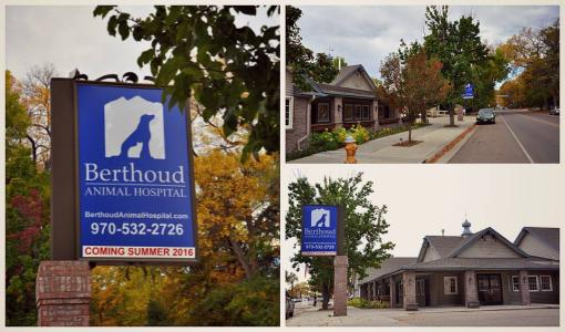 Visit Berthoud Animal Hospital for a healthy pet